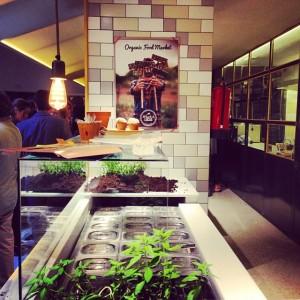 Gastroeconomy_HuertodeLucas1